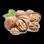 walnut-clip